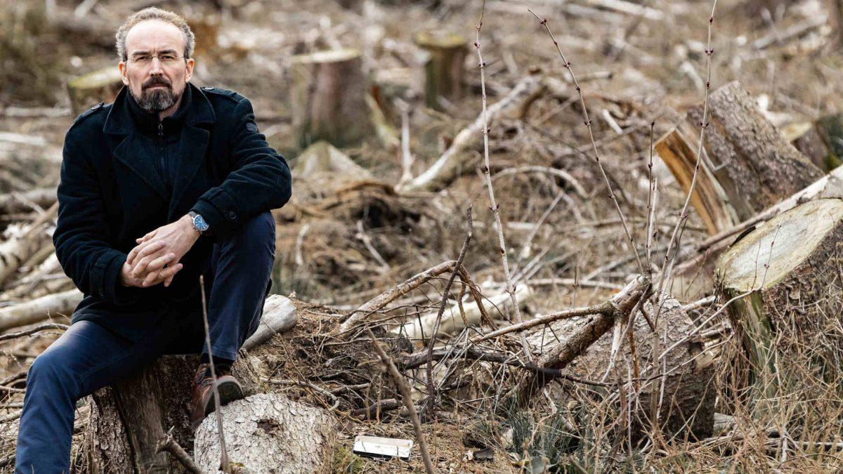kasten leineke windbruch reinhardswald