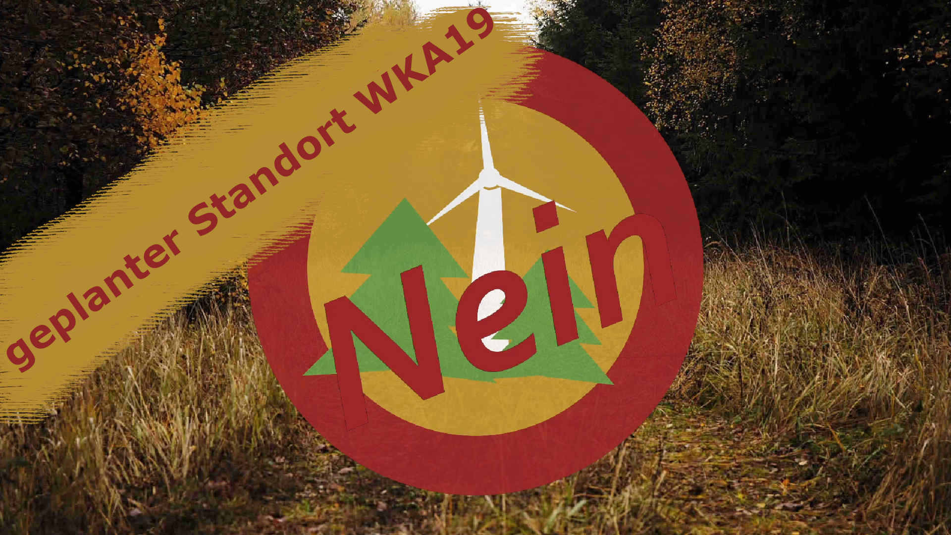 Windpark Reinhardswald – geplanter Standort der Windkraftanlage 19