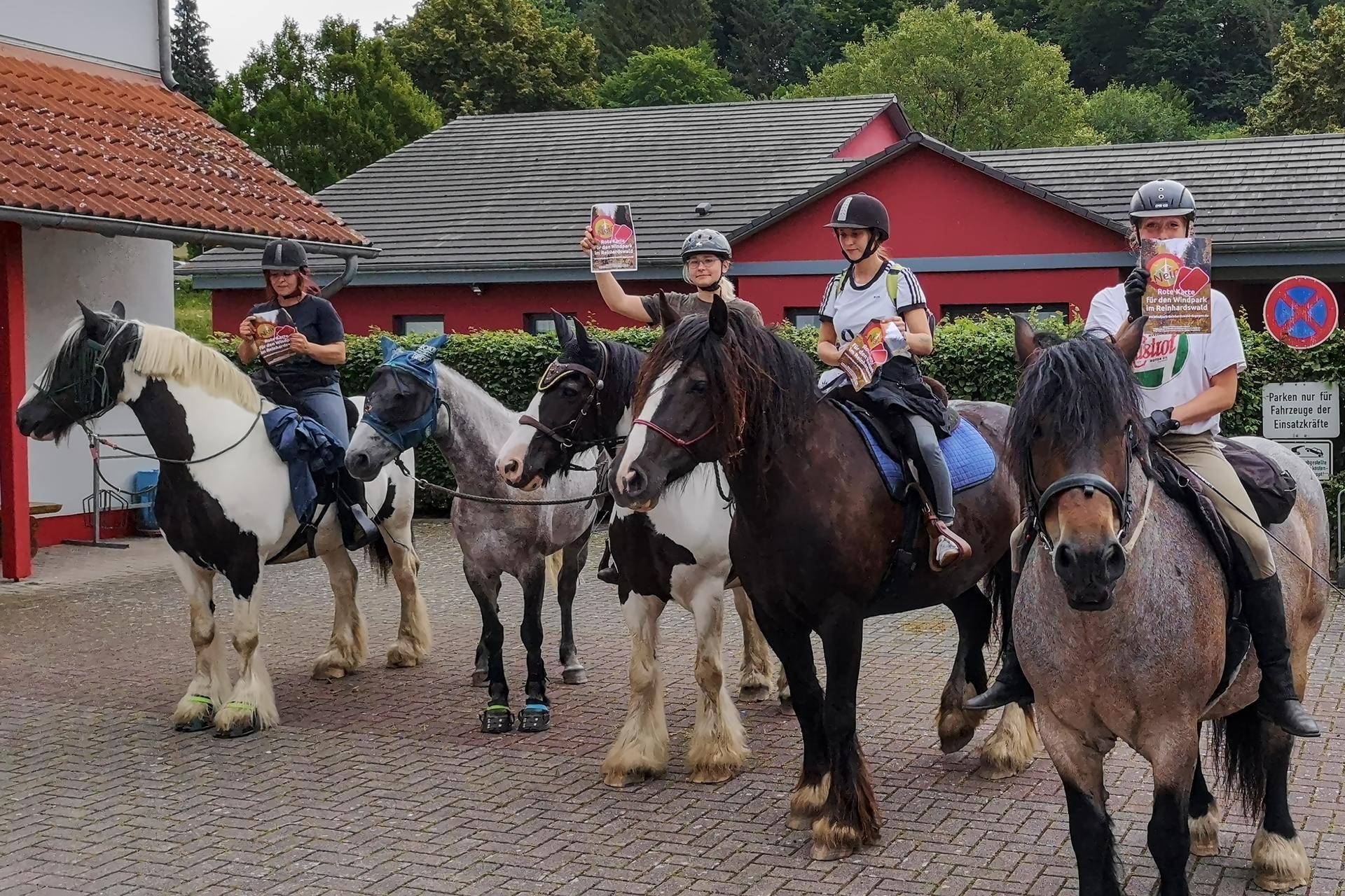 Unterstützung auf dem Pferd aus Bad Karlshafen