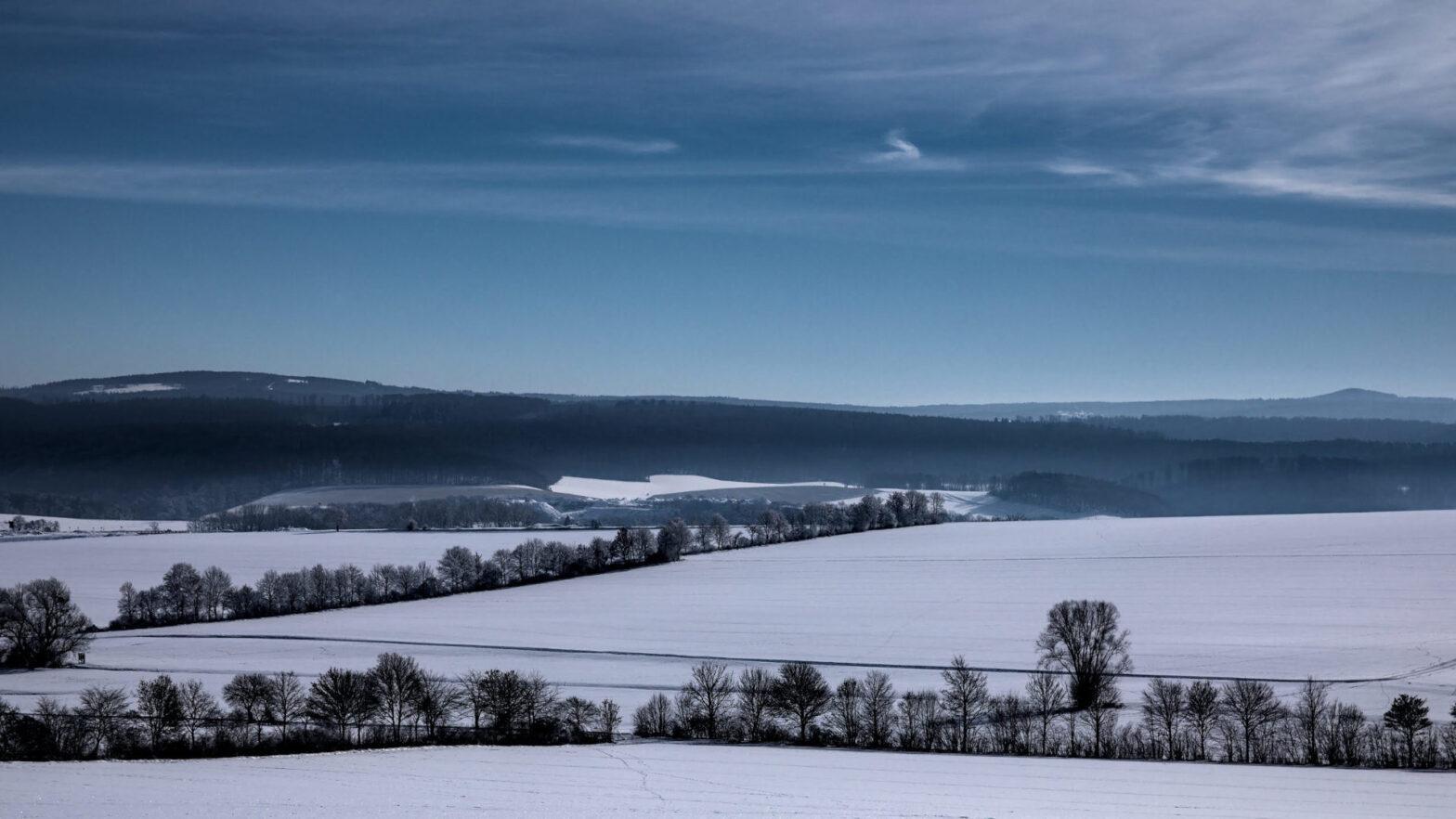 Reinhardswald im Winter